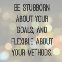 stubborn 4